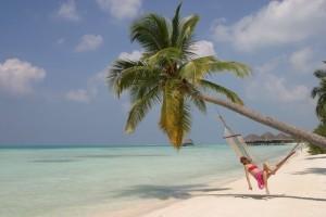 spiaggia con palma
